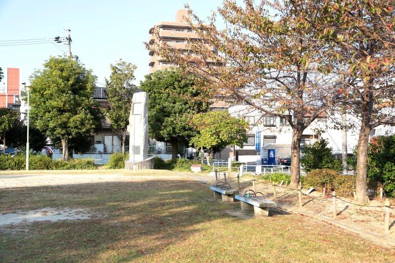 209164_cyayagasaka19-01