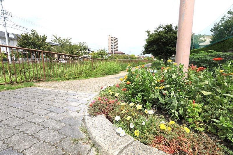 季節の花も咲く「扇川緑道」