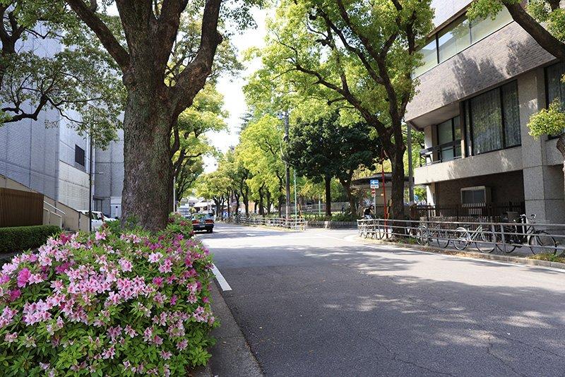 「古沢公園」付近のまちなみ