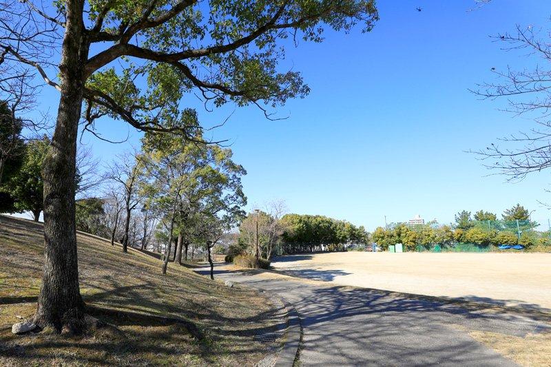 スポーツと緑に親しめる「通曲公園」
